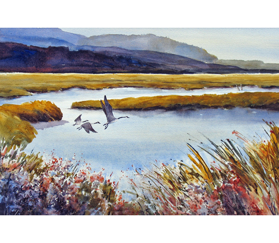 """Taking Flight"" watercolor by Julie Creighton"