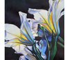 "Link to ""Luminous Lilies"" by Beverly Fotheringham"
