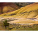 "Link to ""Painted Hills with Juniper"" by Keith Lazelle"