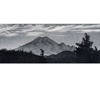 "Link to ""Evening Light, Mt. Rainier"" by Steve McMIllan"