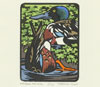 "Link to ""Northern Shoveler"" print by Chandler O'Leary"
